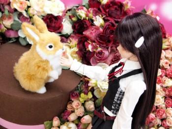 由綺ちゃんin天使のすみか・立川店