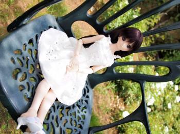 椅子と花と由綺ちゃん
